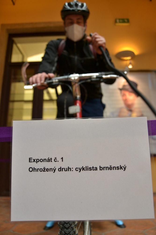 V Brně byl dnes k vidění  zvláště ohrožený druh Cyklista brněnský
