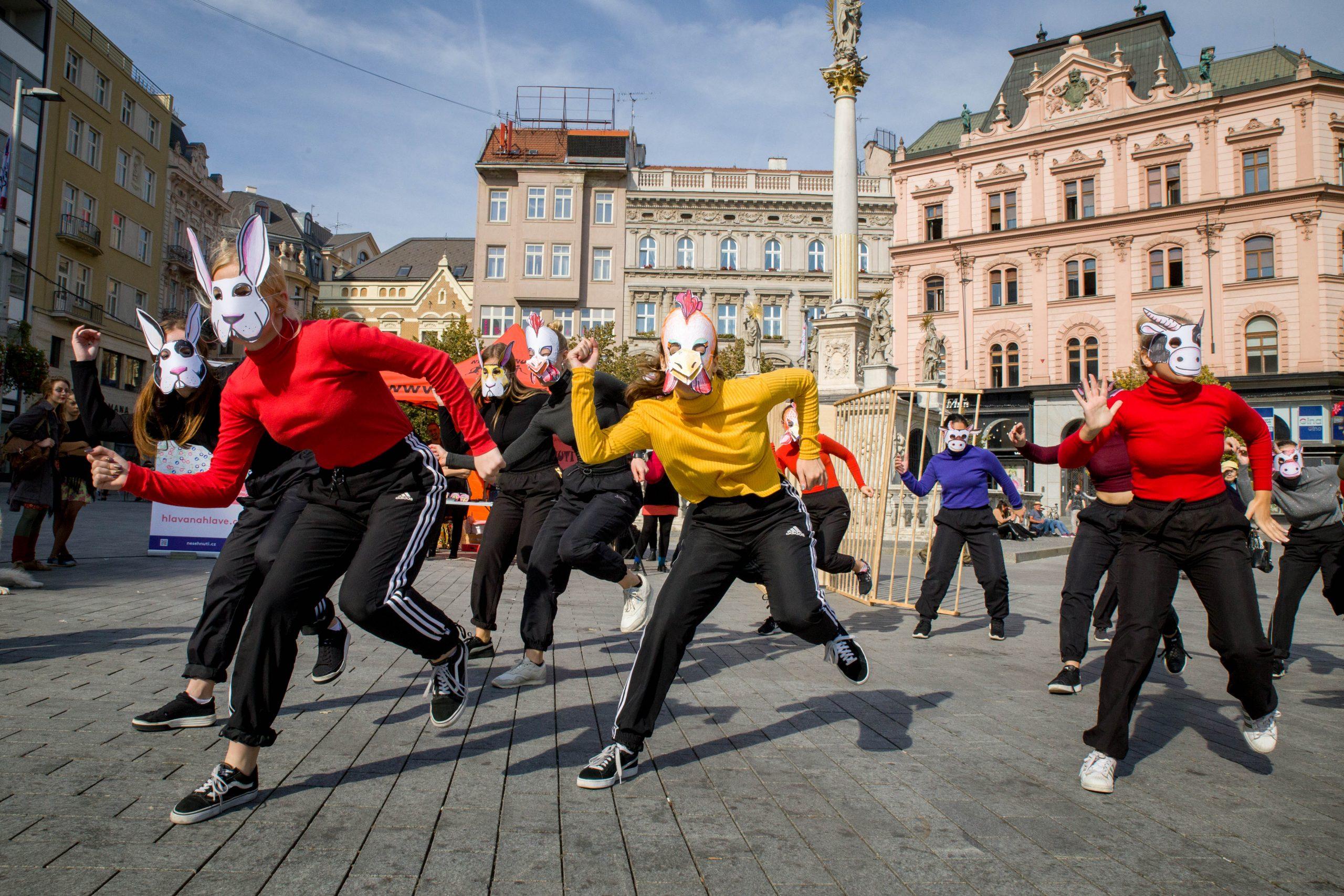 V Brně dnes začalo osvobození hospodářských zvířat z klecí